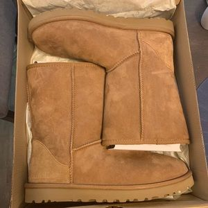 Classic short UGG boots with box